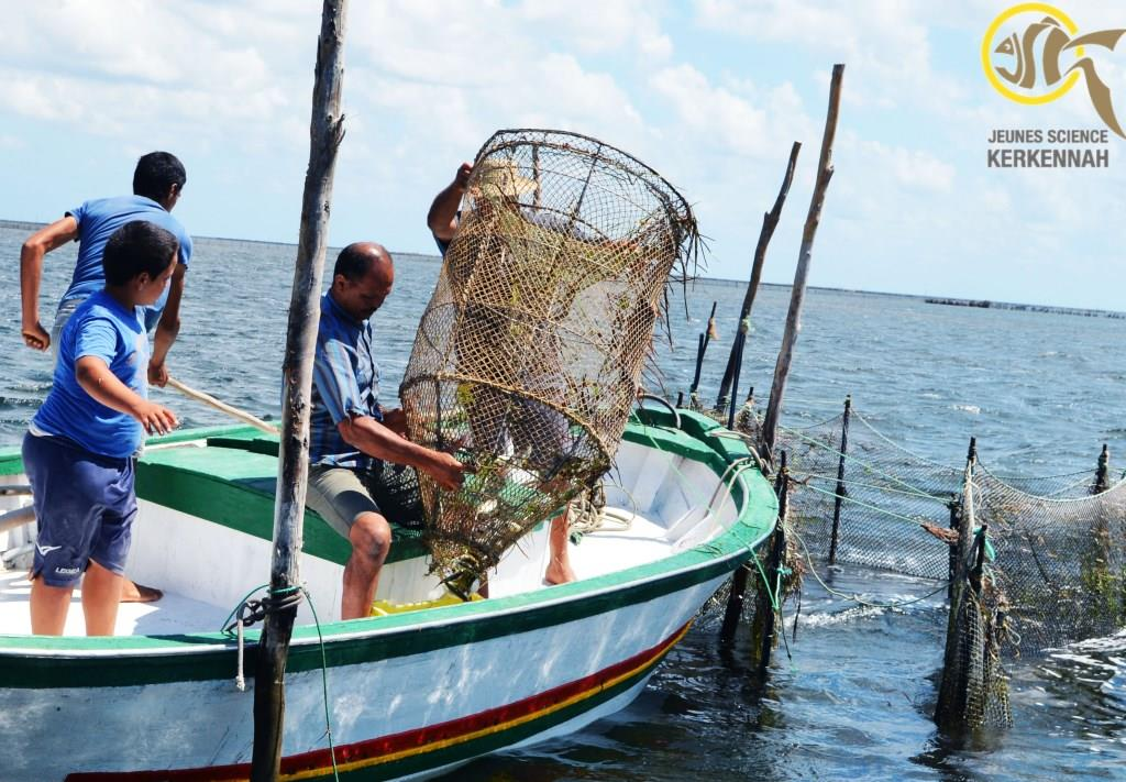 Ecotourism and artisanal fishing in Kerkennah, YOU CAN! | The Switchers