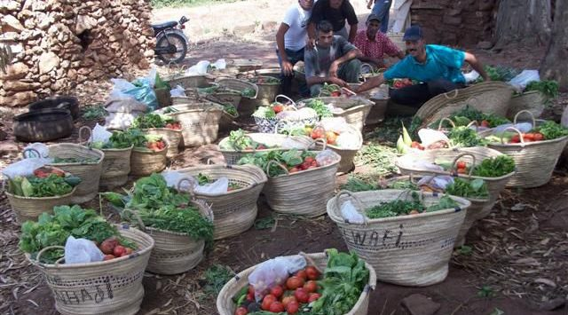 Combining Agroecology and Pedagogy in Morocco | The Switchers
