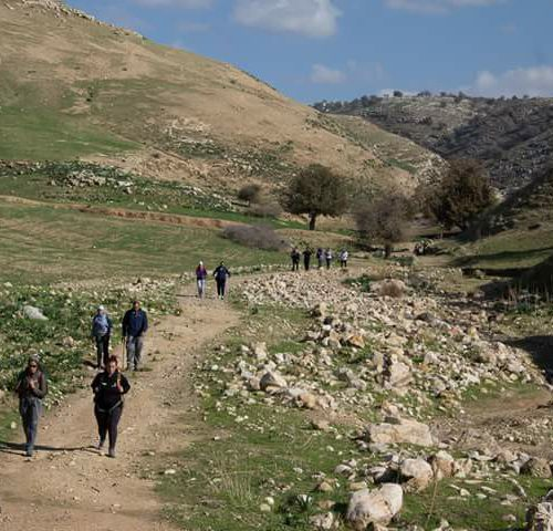 Walking in Jordan: an immersion in the country's culture and legendary hospitality! |The Switchers