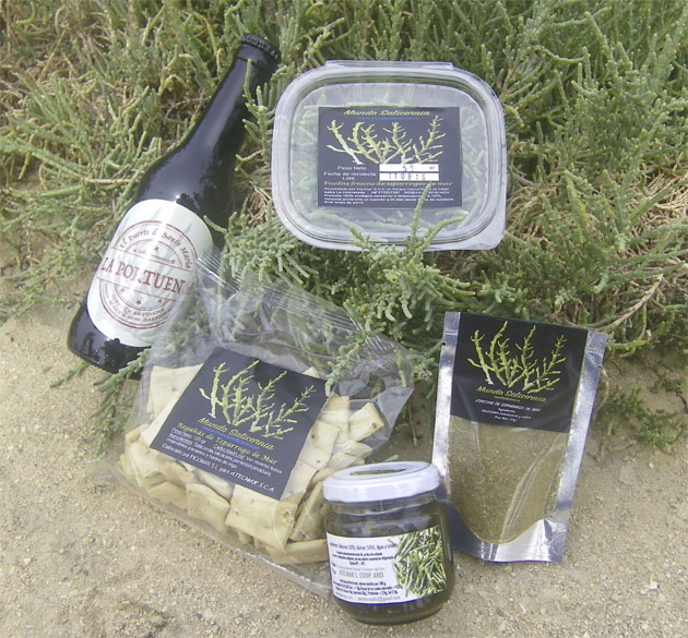 This cooperative produces 100% handmade products from Salicornia |The Switchers