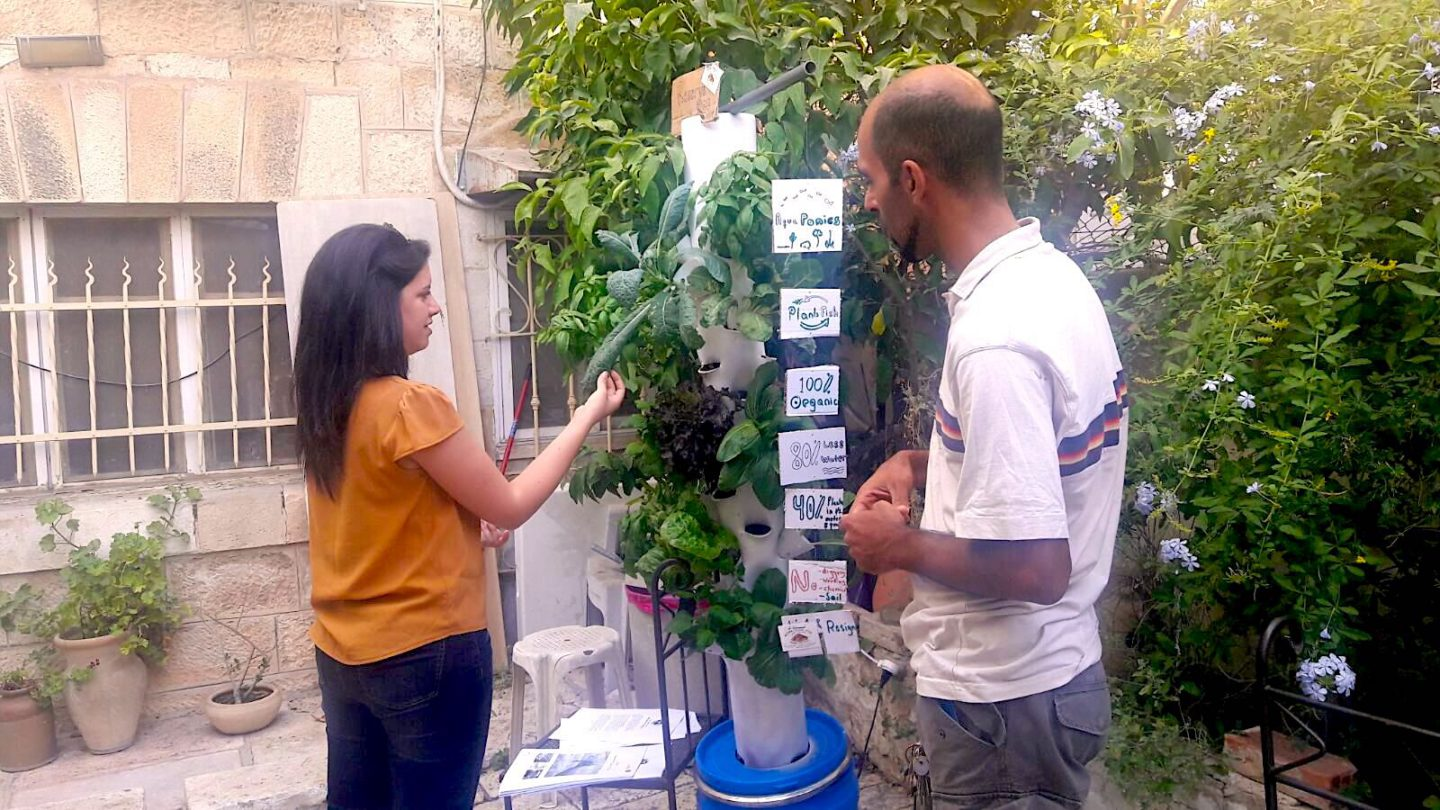This entrepreneur is paying tribute to the fertile land of Palestine |The Switchers