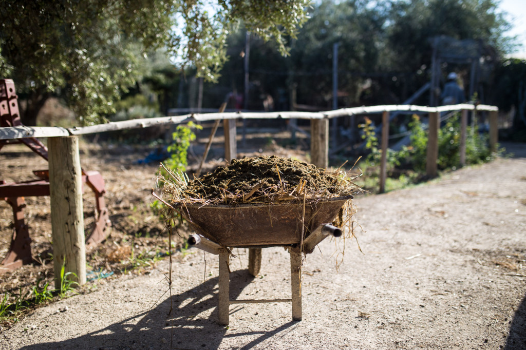 A model of an environmentally responsible farm |The Switchers