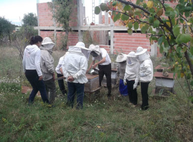 Community members are trained as part of the Apiary School of Djurdjura