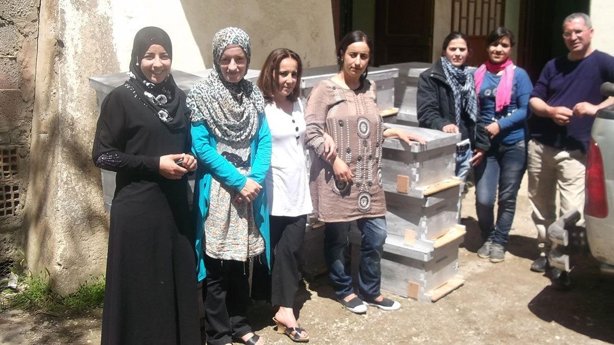 An ecological beekeeping project high in the Algerian mountains | The Switchers