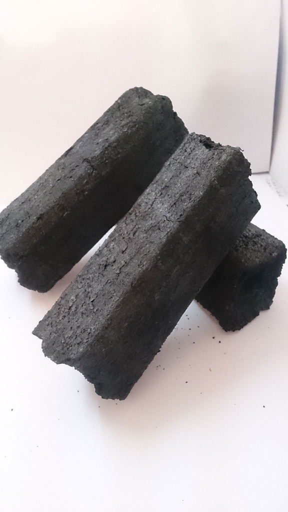 An agricultural company that produces biomass briquettes | The Switchers