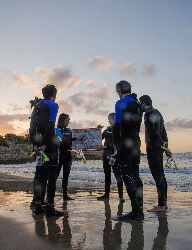 Protecting marine life through responsible tourism in Spain's L'Ametlla de Mar | The Switchers