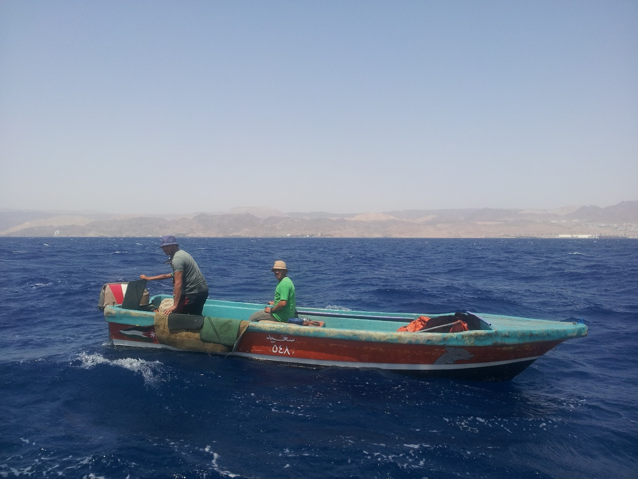 Supporting sustainable fisheries at the Gulf of Aqaba | The Switchers