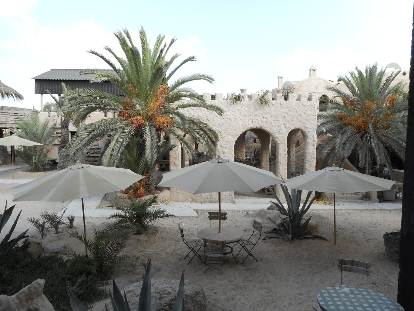 An eco-tourist village is giving a voice to Tunisian youth | The Switchers