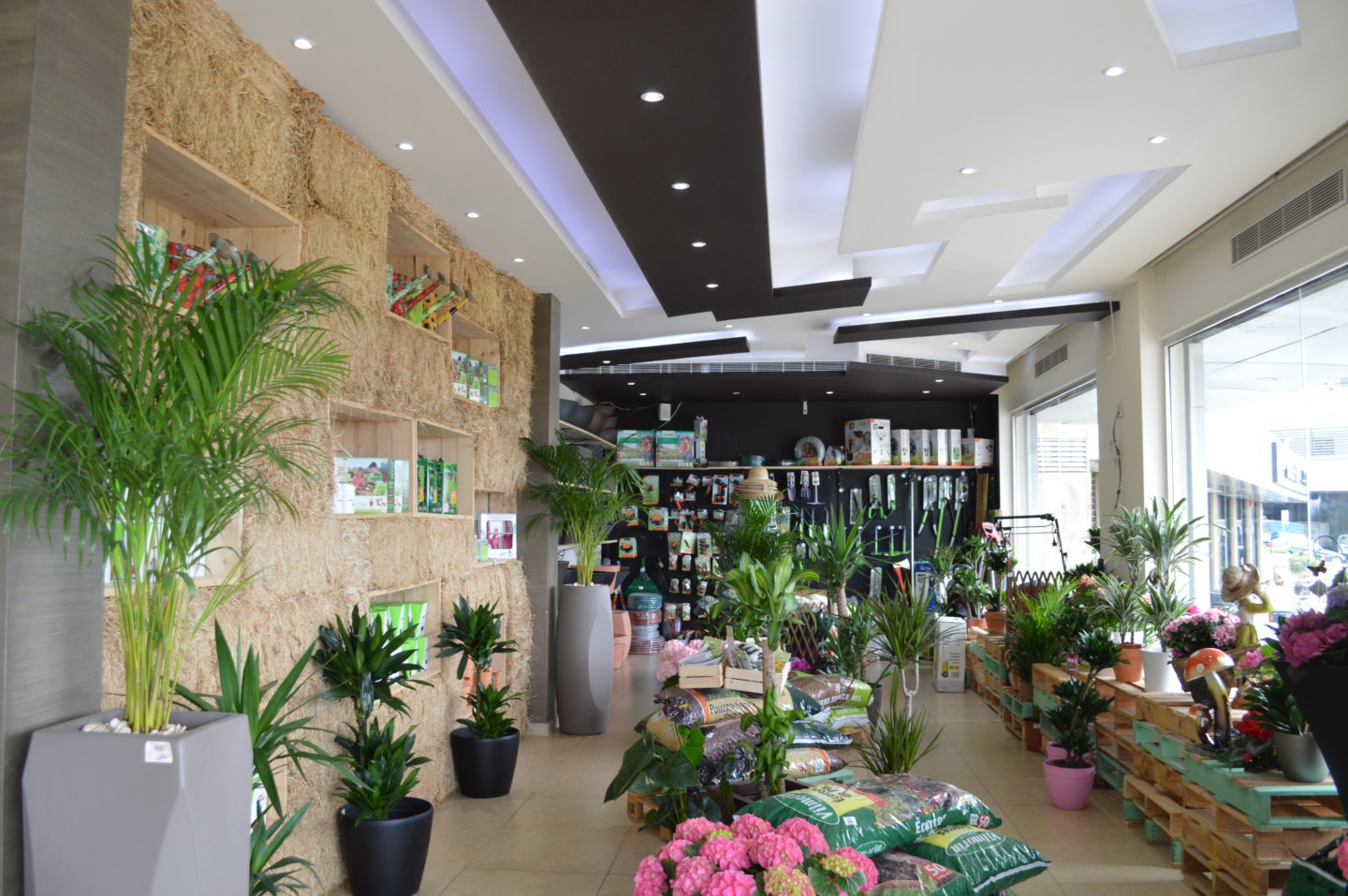 A green concept store for an eco-friendly lifestyle! | The Switchers