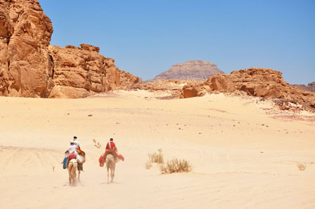 Meet Egypt's first eco-lodge saving on energy and water consumption |The Switchers