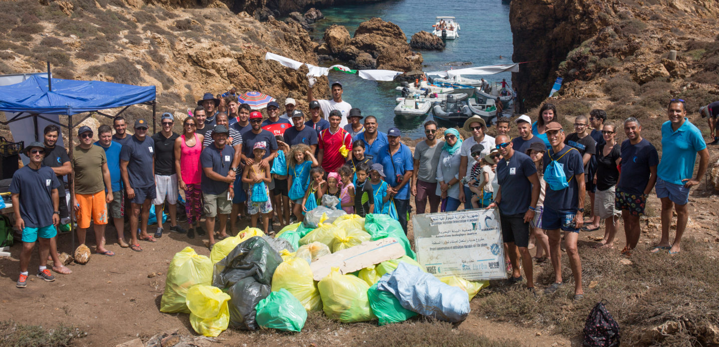 Sustainable Fishing and Conservation on Plane Island |The Switchers