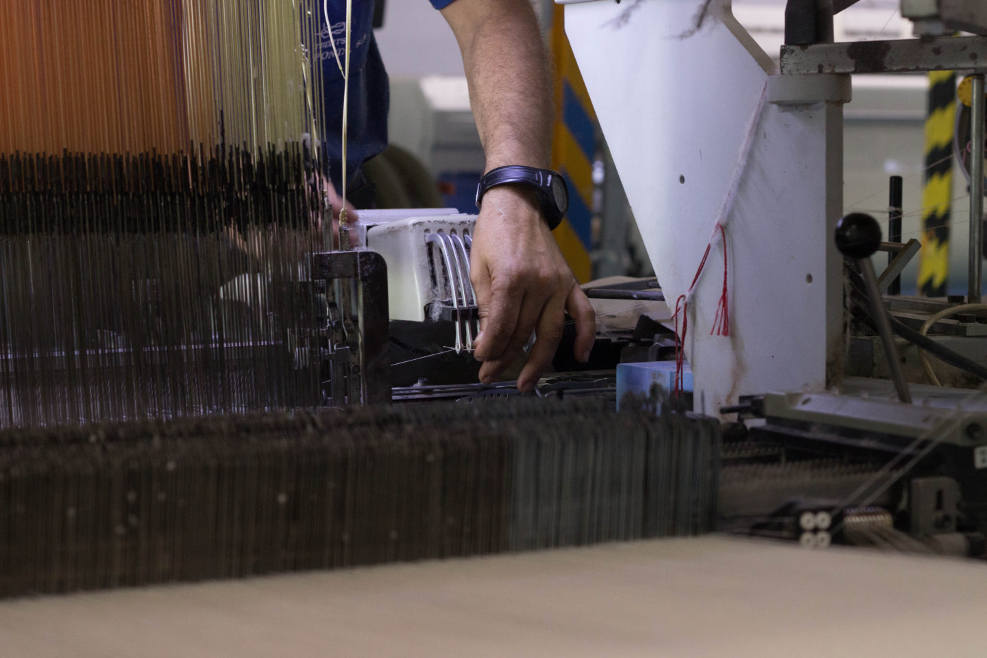 A story of no ordinary cotton sweeps Spain's conventional textile industry | The Switchers