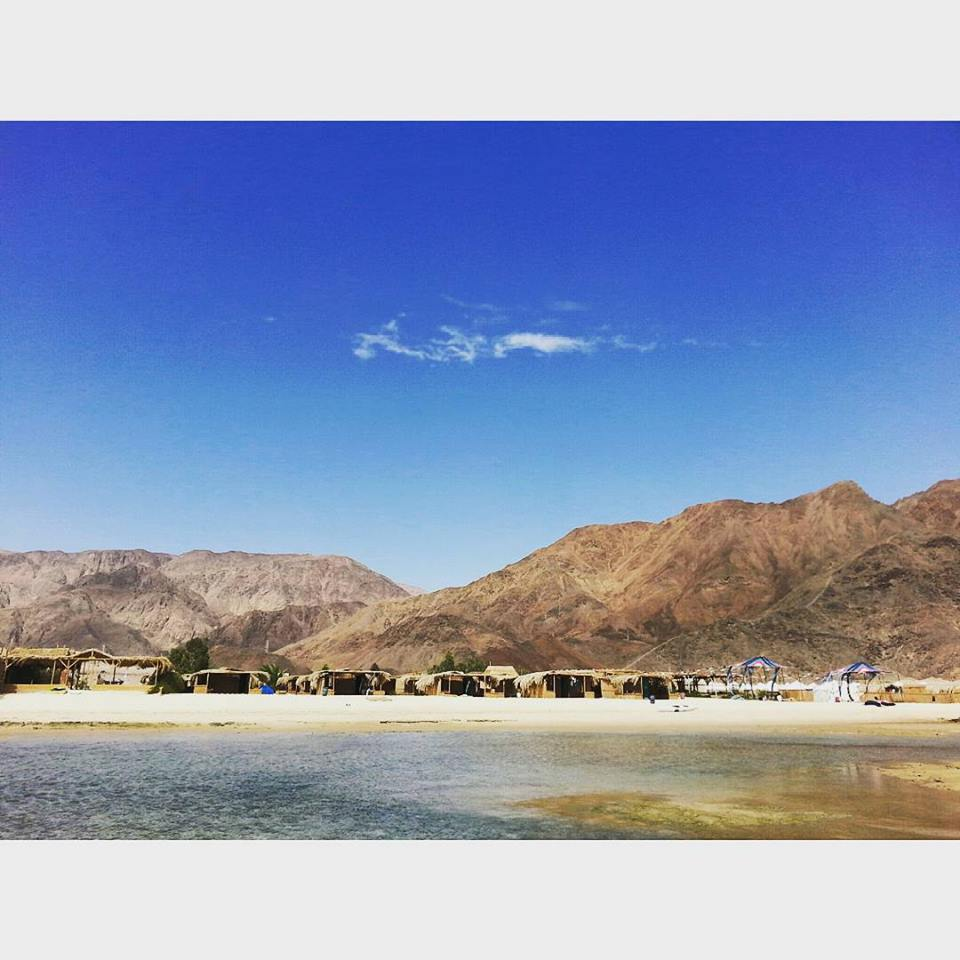 Tourism takes a sustainable turn in South Sinai | The Switchers