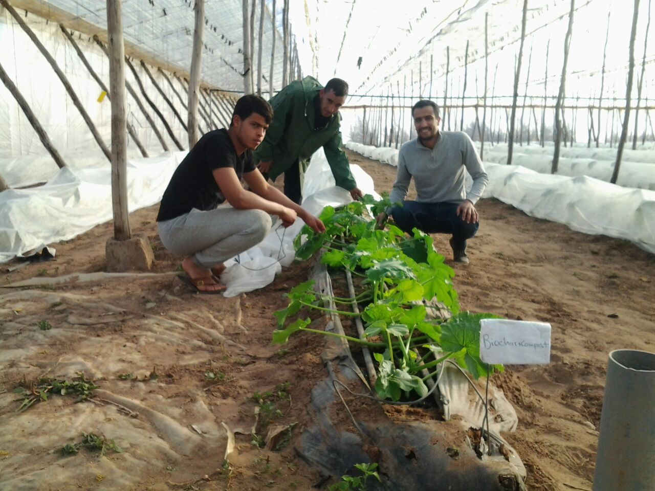 One Moroccan entrepreneur is changing the way farmers look at organic waste | The Switchers