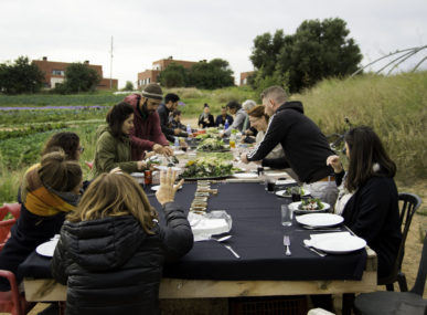 Everybody sitting down at one big table to share the entirely vegetarian meal prepared by eveyone who gathered around the table