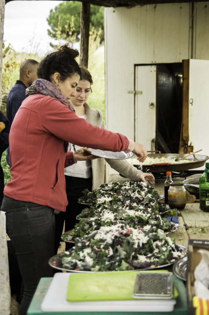 Changing eating habits by bringing food-for-thought to the table |The Switchers