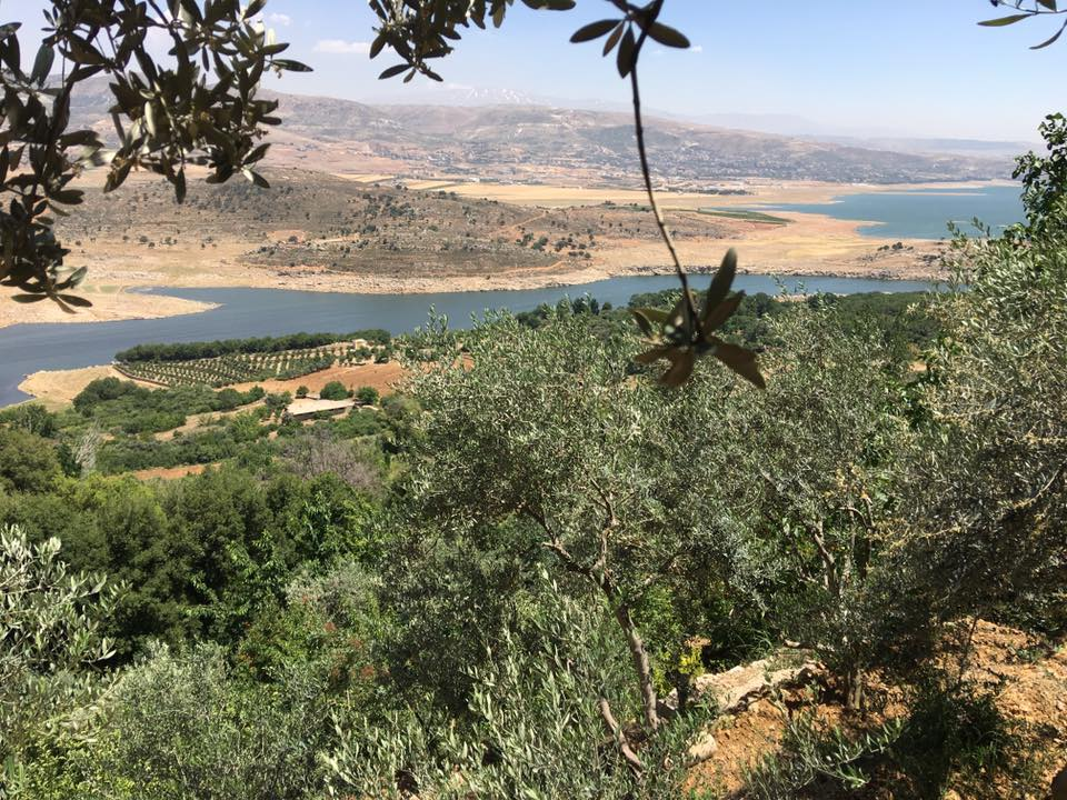 How an agroecological approach is helping save this Lebanese family farm | The Switchers