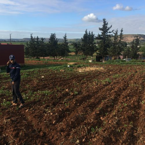 Verd hopes to make smaller farmers profitable so they don't have to drive to work the land of others to make money