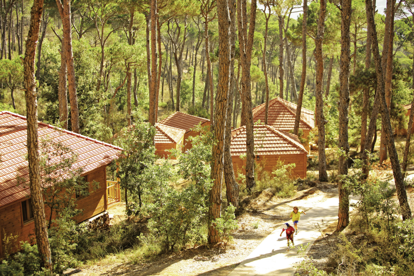 The largest green space in Lebanon is now home to sustainable tourism | The Switchers