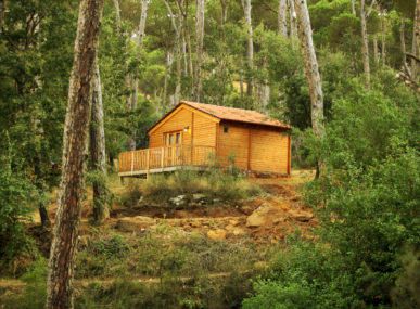 La Maison de la Forêt is a communal eco-touristic site within Bkassine Pine Forest